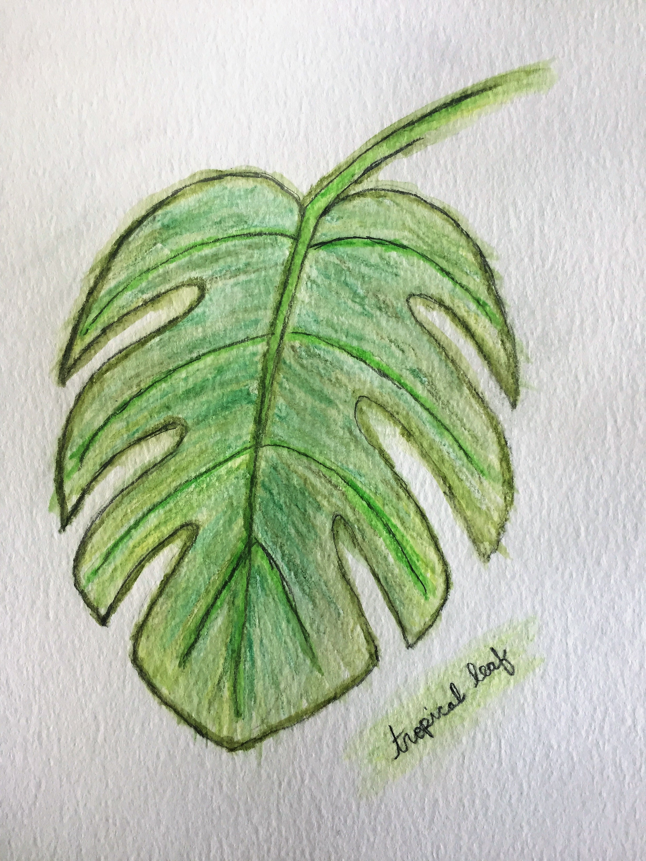 Monstera Leaf A Free Embroidery Pattern Nana Bumblebee Digital download, pdf, embroidery pattern, printable, digital tutorial, instant download. monstera leaf a free embroidery